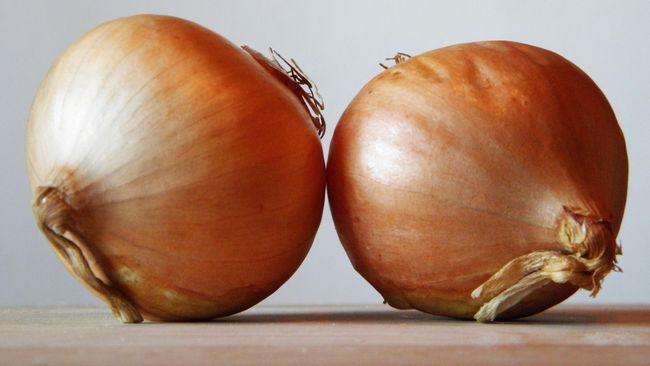 Bawang bombay bukan cuma untuk masakan. Akan tetapi, ada manfaat bawang bombay untuk rambut rontok.